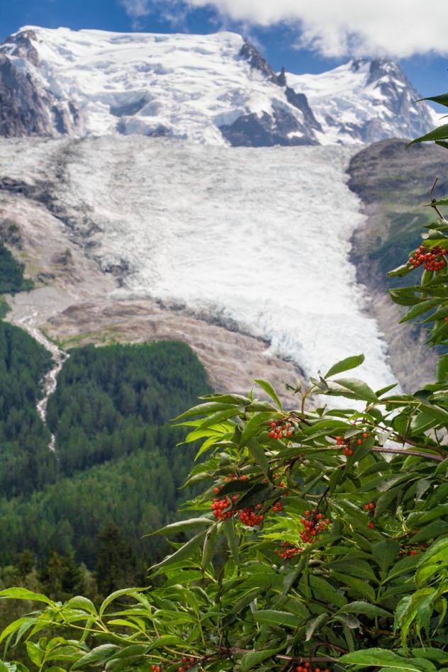 Glacier des Bossons en Chamonix, Francia. © mateoht 1990-2013 - http://lafotodeldia.net