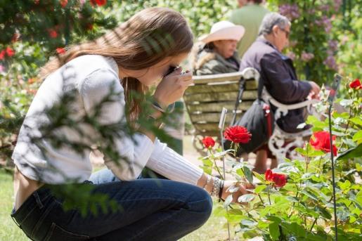 Jardines de Versalles, Francia. © mateoht 1990-2013 - http://lafotodeldia.net