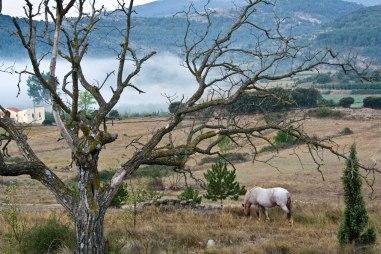 El valle, en Chodos (Castellón), al amanecer. © mateoht 1990-2013 - http://lafotodeldia.net