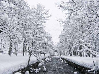 Nieva en Panticosa, Huesca. © mateoht 1990-2013 - http://lafotodeldia.net