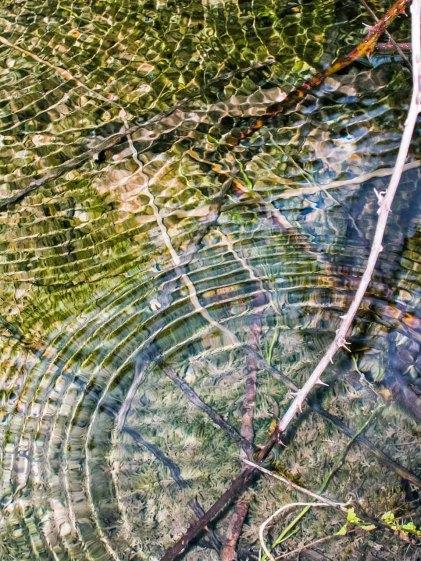 Superficie del agua. © mateoht 1990-2013 - http://lafotodeldia.net