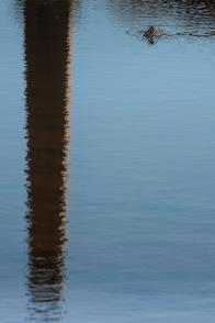 Reflejo de chimenea en la Albufera, Valencia. © mateoht 1990-2014 - http://lafotodeldia.net